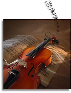 wedding violin
